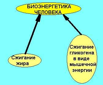 гороскоп для лучших знаков